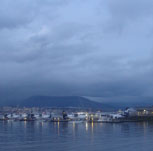 The Lighthouse, the Bird and the Poem on the Shore
